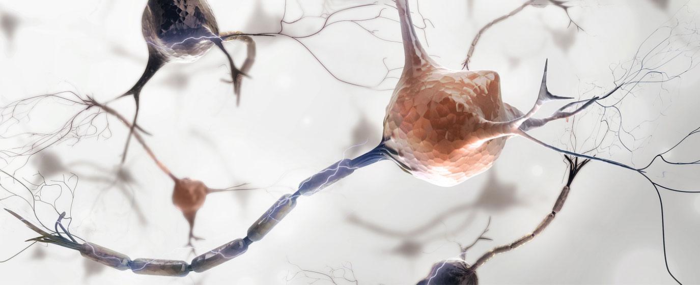 Neuigkeiten rund um das Krankheitsbild Migräne